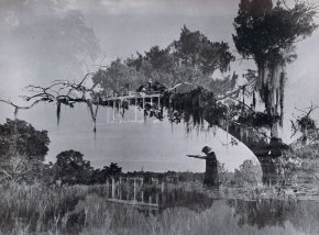 From Decay to Disney: Queering the Ghosts along theMississippi