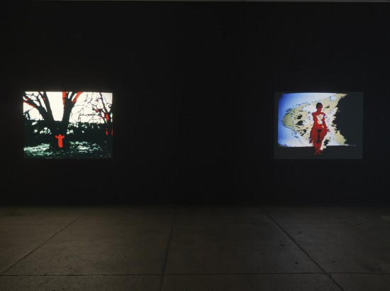 Installation view of Ana Mendieta's 'Energy Charger' and 'Butterfly' in 'Experimental and Interactive Films' at Galerie Lelong