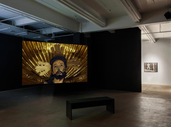 Installation view of Carlos Motta Deviations at PPOW Gallery