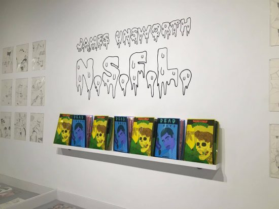 Installation view of James Unsworth N.S.F.L. at Printed Matter (all images by author for Filthy Dreams unless otherwise noted)