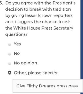 Filthy Dreams' Mainstream Media Accountability Survey