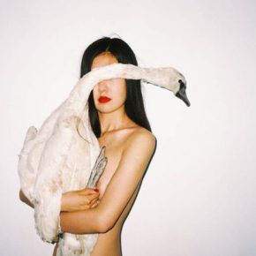 A Black Swan Song For Ren Hang