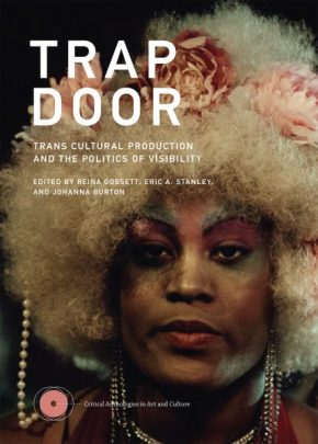 "Visibility At What Cost: ""Trap Door: Trans Cultural Production And The Politics Of Visibility"""